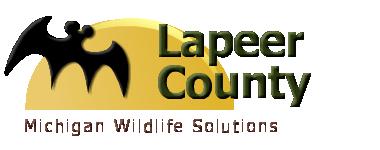 Lapeer County, MI Wildlife Control