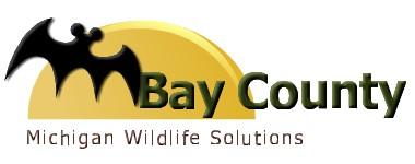 bay county logo