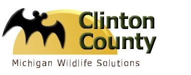 Clinton County Logo