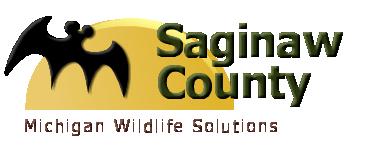 Saginaw County