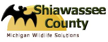 Shiwassee County