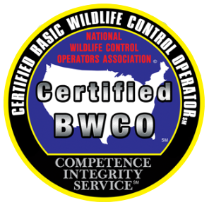 BWCO Certified